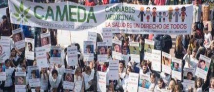 Mendoza otorgará aceite de cannabis gratis