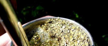 Hoy liberan la yerba con Cannabis en el país